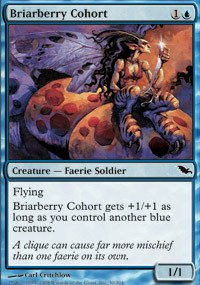 Magic: the Gathering - Briarberry Cohort - Shadowmoor