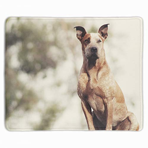 Non-Slip Rubber Comfortable Customized Computer Mouse Pad ()-Dog Sitting Shepherd]()