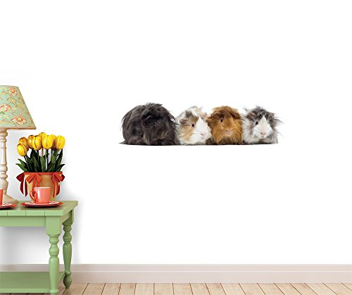 "Four Peruvian Guinea Pigs in a Row Vinyl Wall Sticker - 24""W x 7""H - by Wallmonkeys Decals"