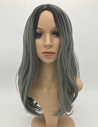 Beauty : Jollyvogue Fashion Ombre Silver gray Women's Wig Natural Hairline Synthetic None Lace Wigs (Black Ombre Silver gray)