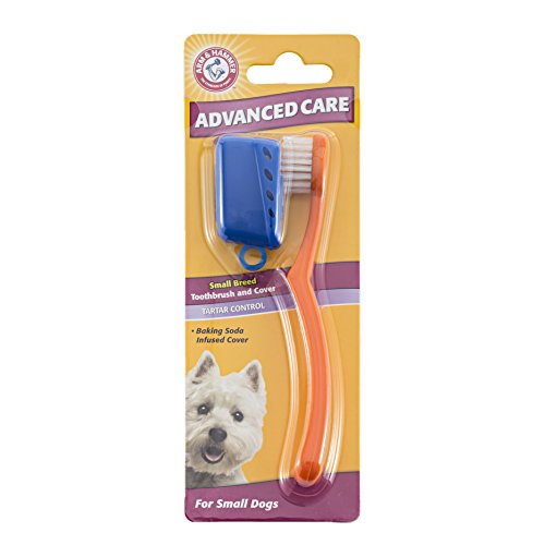 Arm-Hammer-Advanced-Care-Small-Breed-Toothbrush-and-Cover