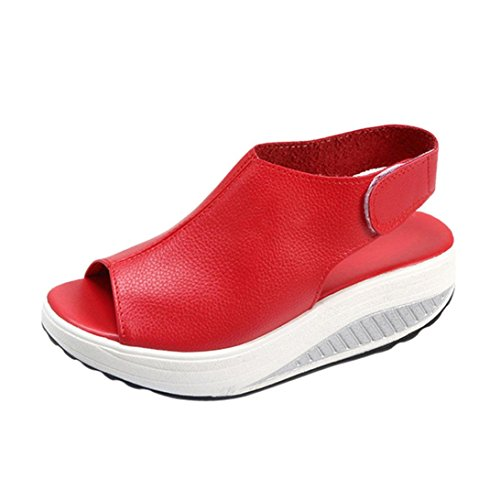 New Tootu Fashion Women Shake Shoes Summer Sandals Fish Mouth Thick Bottom HIGT Heel Shoes (US:9/43, Red)