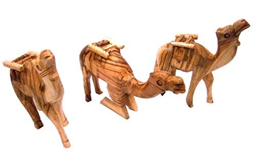 Holy Land Camels Set of Three ()