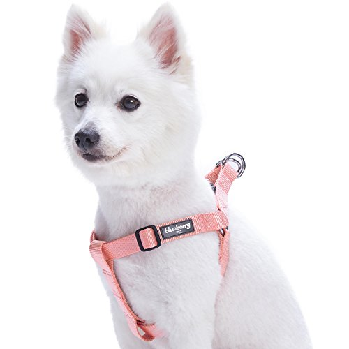 Blueberry Pet Essentials 19 Colors Step In Classic Dog Harness Chest Girth 16 5 21 5 Baby Pink Small Adjustable Harnesses For Dogs