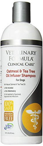 Veterinary Formula Clinical Care Oatmeal and Tea Tree Oil Infuser Shampoo for Dogs - Fast-Acting, Gentle, 100% Safe Medicated Shampoo to Treat Fungal, Bacterial and Viral Skin Infections in Dogs, 16oz