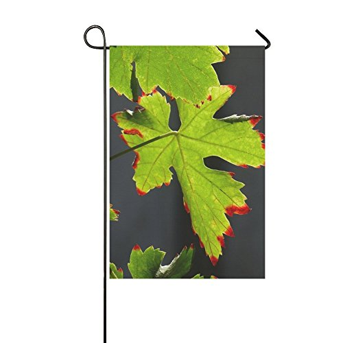 Redhead Screws - Home Decorative Outdoor Double Sided Screw Autumn Summer Leaf Leaves Green Redhead Garden Flag,house Yard Flag,garden Yard Decorations,seasonal Welcome Outdoor Flag 12 X 18 Inch Spring Summer Gift