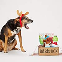 BarkBox and Super Chewer Grinch Holiday Plush Toys (Limited Edition Gift )
