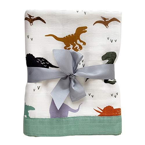 Swaddle OYRGCIK Blankets Receiving Dinosaur product image