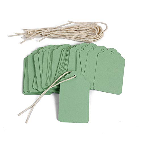 100pcs Kraft Paper Tags with Natural Jute Twine Thanks Tag Thank You Tag Home DIY Wedding Birthday Baby Shower Gift Tags for Guest Price Tag 4x7cm (Green) (Tags Green Gift)