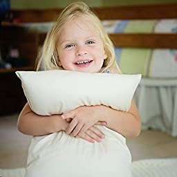 Little One\'s Pillow - Toddler Pillow, Delicate Organic Cotton, Hand-Crafted in USA (13 in x 18 in)