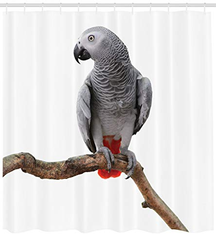 Ambesonne Grey Shower Curtain, African Parrot Bird Psittacus Erithacus Standing on a Branch Tropical Nature Wildlife, Cloth Fabric Bathroom Decor Set with Hooks, 75 Inches Long, Multicolor ()