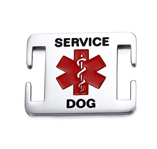 Beydodo Tag for Dog Collar Stainless Steel Service Dog Tag Id Square Charms SERVICE DOG Medical Signs