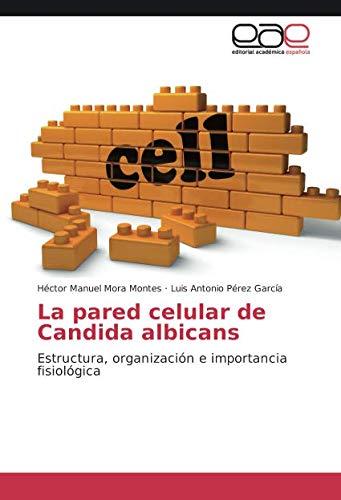 La Pared Celular De Candida Albicans Estructura