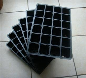 6 pack seed trays - 6