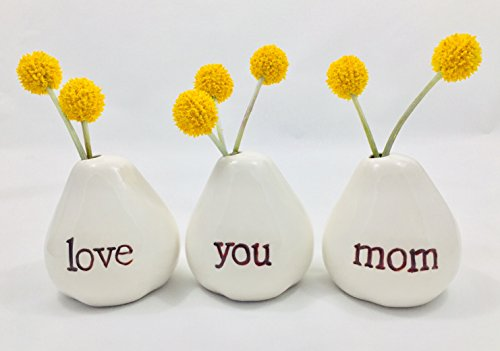Gift for Mom...LOVE YOU MOM Bud Vases for Birthday Gift, Get Well Gift, Thank You Gift Mothers Day Gift, Christmas Gift, Valentines Day Gift, Going Away Gift or JUST BECAUSE! (Moms Kitchen Sign)