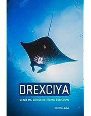 Drexciya: Veinte mil surcos de techno submarino