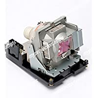 Replacement projector lamp for Optoma BL-FS300C