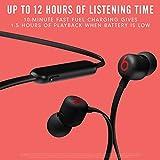 New Beats Flex Wireless Earphones – Apple W1