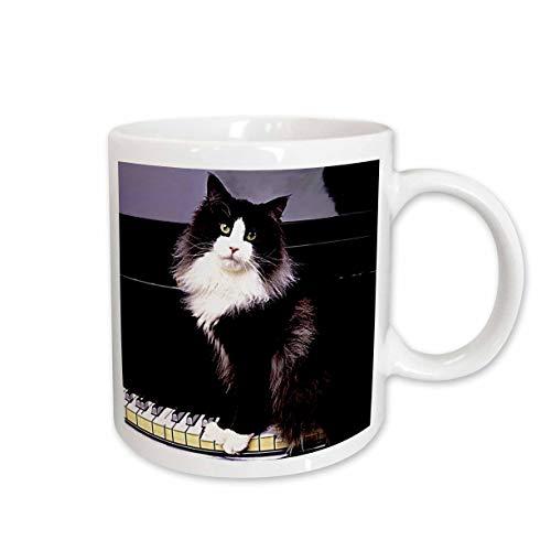 - 3dRose Tuxedo Cat Mug, 11-Ounce