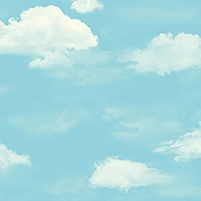 blue sky and white clouds wallpaper/Sweet kids room wallpaper/boys and girls wallpapers/bedroom wallpaper clouds-A