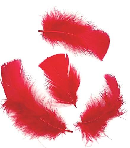 - 200+ Feathers, Turkey Feather Plumage, 200-250 Feathers, Dyed, Tbase, 2-5 inches Long, Craft Feathers, Loose, Red, per Ounce