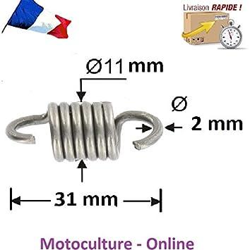 Motoculture-Online Muelle de Embrague para Cortasetos o Otros Máquinas: Amazon.es: Jardín
