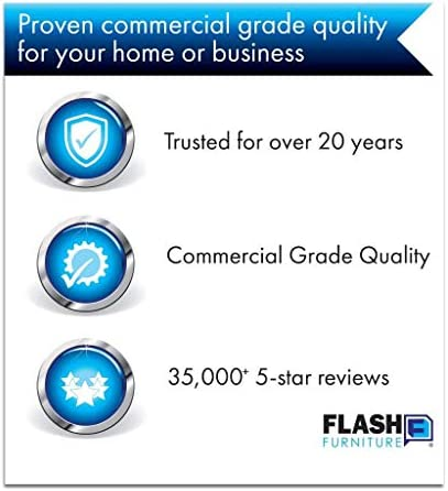 FLASH FURNITURE 10 PACK HERCULES SERIES 650 LB. CAPACITY PREMIUM BLACK PLASTIC FOLDING CHAIR