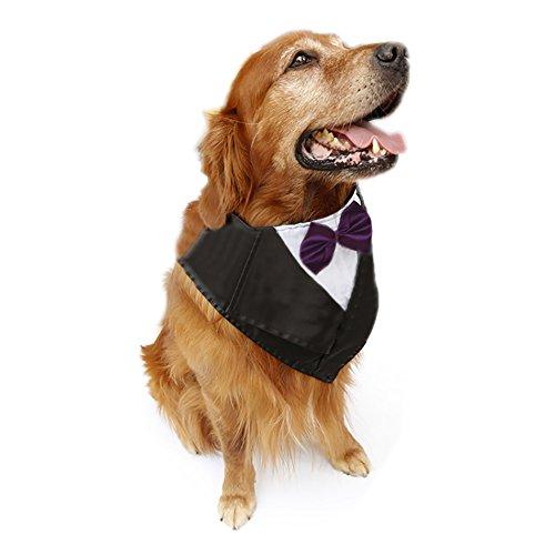 TopTie Dog Groom Tuxedo Triangle Scarf, Wedding Tie, Pet Costume, Halloween PURPLE