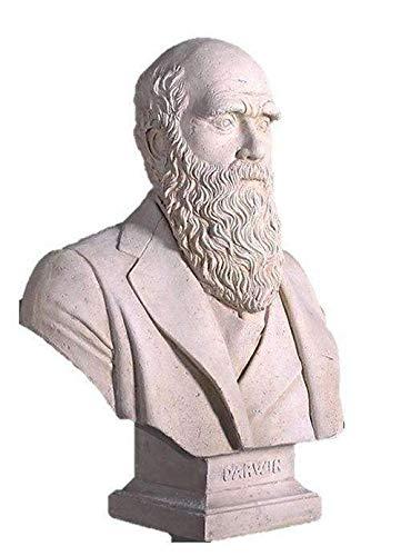 LM Treasures Bust Darwin ()