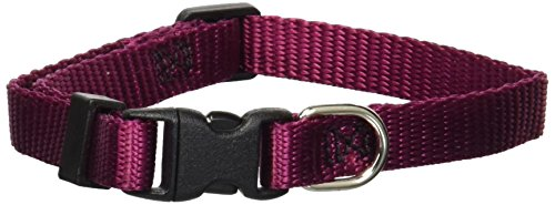 8in   12in Adjustable Safety Cat Collar Burgundy By Majestic Pet Products ()