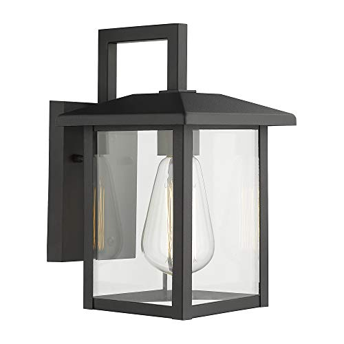 Emliviar Outdoor Wall Light, 1-Light Wall Sconce, Black Finish with Clear Glass, 20064B1 ()