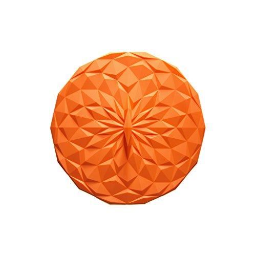 cast iron 8 inch lid - 8