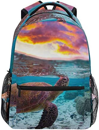 Fantasy Sea Turtle 12