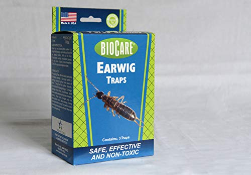 BioCare | Superior Earwig Trap (Contains12 Complete Traps) | Non-Toxic & Pesticide Free | Child & Pet Friendly| Made in USA (Best Pesticide For Earwigs)