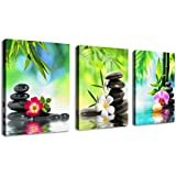 Wall Art Canvas Zen Art Decor SPA Stone Green Bamboo Pink Waterlily and Frangipani Pictures - 3 Panels Modern Canvas Painting Prints Giclee Art for Home Office and Kitchen Framed Ready to Hang