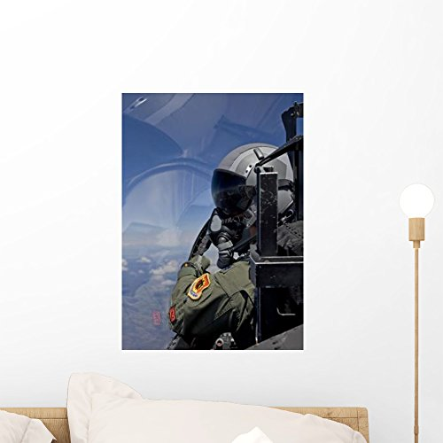 Wallmonkeys F-15 Pilot Looks over Wall Mural by Peel and Stick Graphic (18 in H x 13 in W) WM38365 8310 Wall
