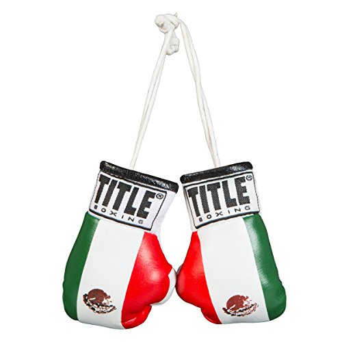 TITLE Boxing Mini Boxing Glove, Mexican Flag