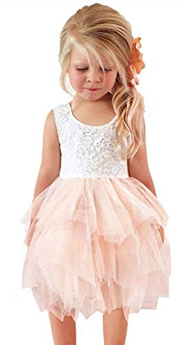 2Bunnies Girl Beaded Peony Lace Back A-Line Tiered Tutu Tulle Flower Girl Dress (No Applique Pink, 3T)
