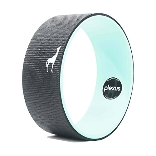 Plexus Wheel   Yoga Pro Series   Only Yoga Wheel Made In The Usa    Doesnt Break Down Like Other Yoga Wheels   Strongest   Most Comfortable Dharma Yoga Prop Wheel   20 000  Happy Customers  12 Inch