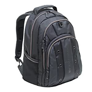 Amazon.com: Swiss Gear Lightweight Backpack for Laptops