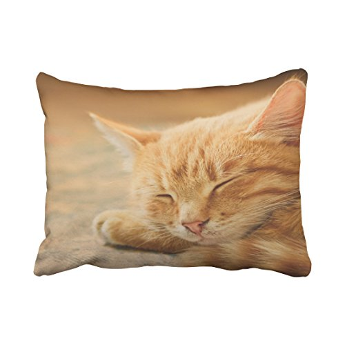 Tarolo Decorative Sleeping Orange Tabby Cat Pillow Case Size 20x26 inches(51x66cm) One Sided