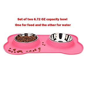 Hubulk 2 Stainless Steel Pet Dog Bowls with No Spill Non-Skid Silicone Mat + Pet Food Scoop for Feeding Dogs Cats Puppies (S, Pink)
