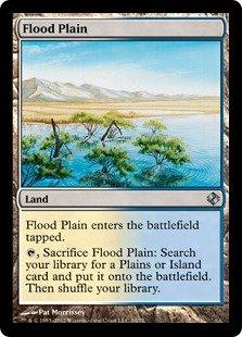 Magic: the Gathering - Flood Plain - Duel Decks: Venser vs Koth