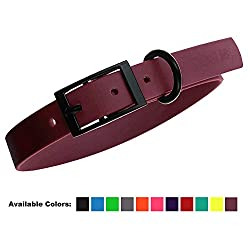 41tYeWyZECL. SS250  - Biothane Waterproof Dog Collar