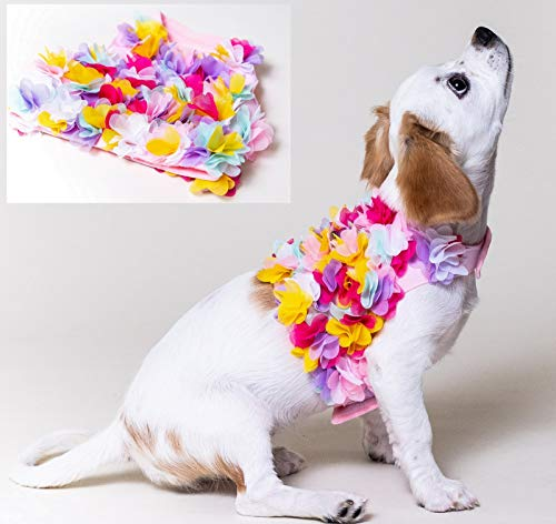 Floral Pink, Purple or Yellow Dog Harness and Leash Set for XSmall and Small Breeds Very Stylish and Cute (M, Multi)