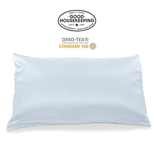 Fishers Finery 19mm 100% Pure Mulberry Silk Pillowcase Good Housekeeping Quality Tested (Lt Blue, Q)