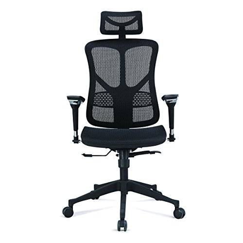 Argomax Mesh Ergonomic Office Chair EM EC001