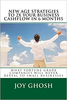 New Age Strategies To 2X Your Business Cashflow in 6 Months: What Fortune Grade Companies Will Never Reveal To Your Small Businesses: Volume 1 (What ... Won't Never Reveal To Small Businesses)