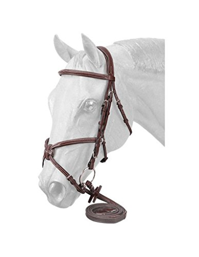 EquiRoyal Premium Padded Fancy Stitched Raised Figure Eight English Bridle - Brown ()