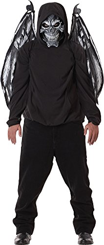 Mens Halloween Costume- Fallen Angel Mask & Wings Adult Costume ()